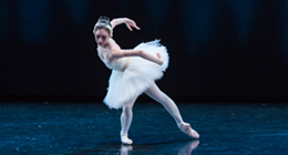 A female dancer on stage in the role of the Swan Queen in Swan Lake