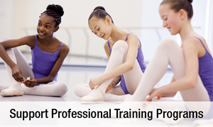 Support Professional Training Programs