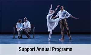 Support Annual Programs